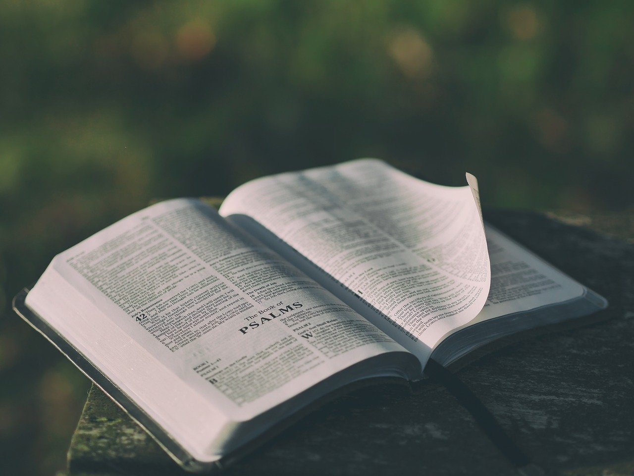 Klugheit und Weisheit